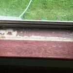 Lead Paint in Window