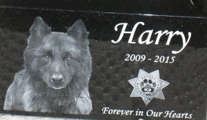 """Audubon County K9 """"Harry's"""" ashes are contained in this special urn."""
