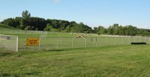 Large dog exercise area